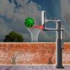 Krepšinio lankus įdomus