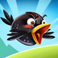 Kvailai paukščiai 2